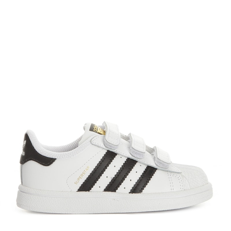 Superstar Sneakers Small
